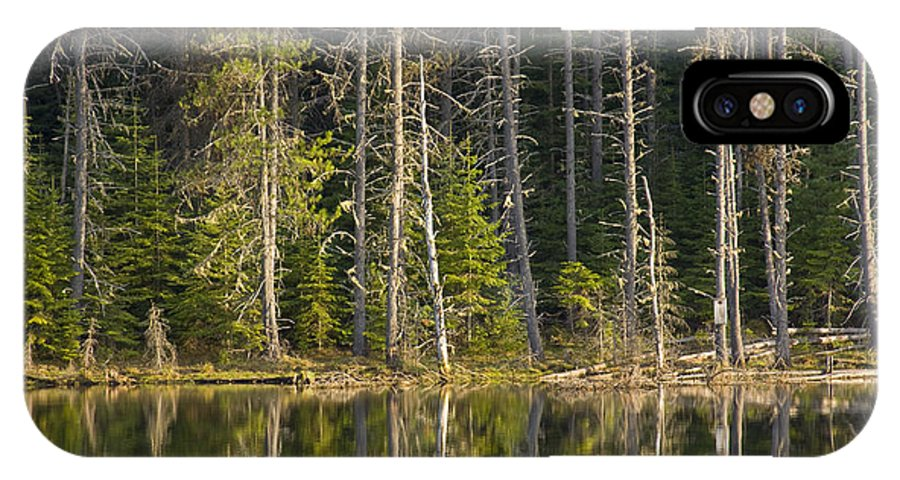 Trees IPhone Case featuring the photograph Moose Creek Reservoir by Idaho Scenic Images Linda Lantzy