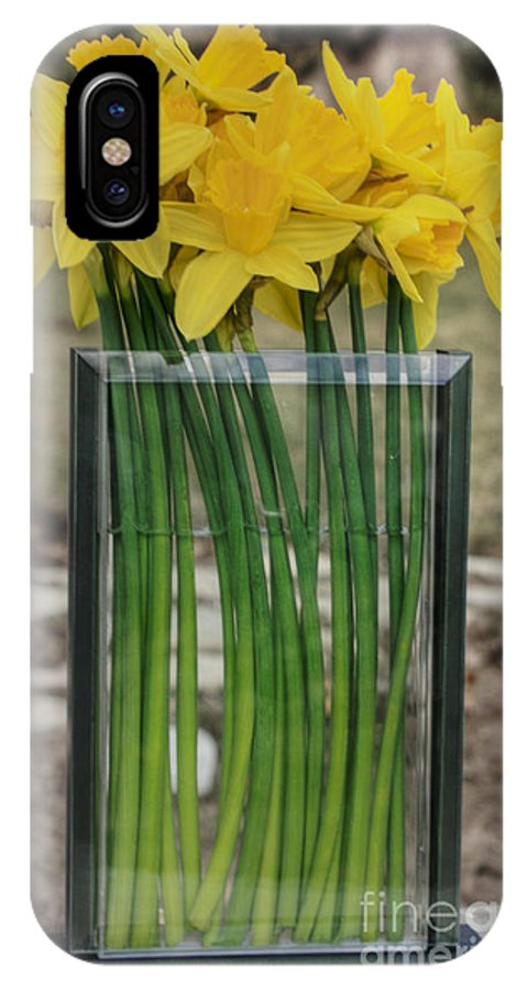 Daffodils IPhone X Case featuring the photograph Morning Daffs by David Bearden