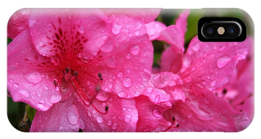 Azaleas IPhone X Case featuring the photograph Morning Dew by Mary Gaines
