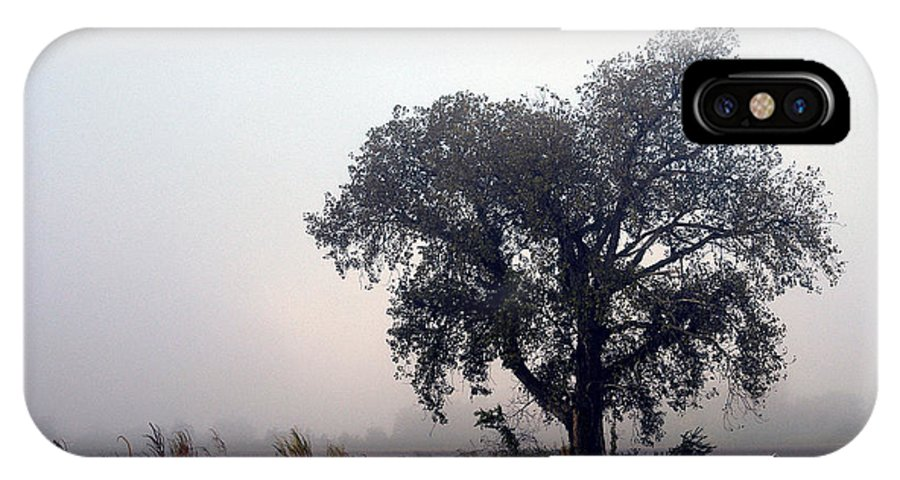 Fog IPhone X / XS Case featuring the photograph Morning Fog - The Delta by D'Arcy Evans