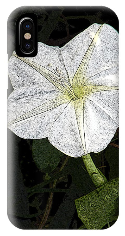 Flower IPhone X Case featuring the photograph Morning Glow by Rosalie Scanlon