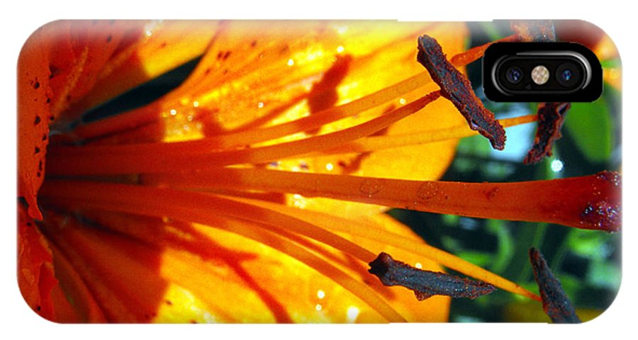 Macro IPhone X Case featuring the photograph Morning Lily by Ruth Palmer
