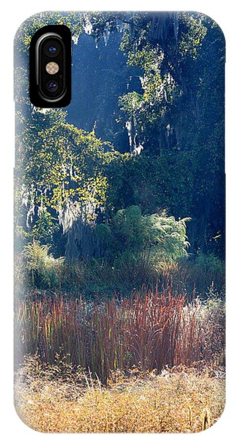 Sunshine IPhone X Case featuring the photograph Morning Marsh Sunshine by Carol Groenen