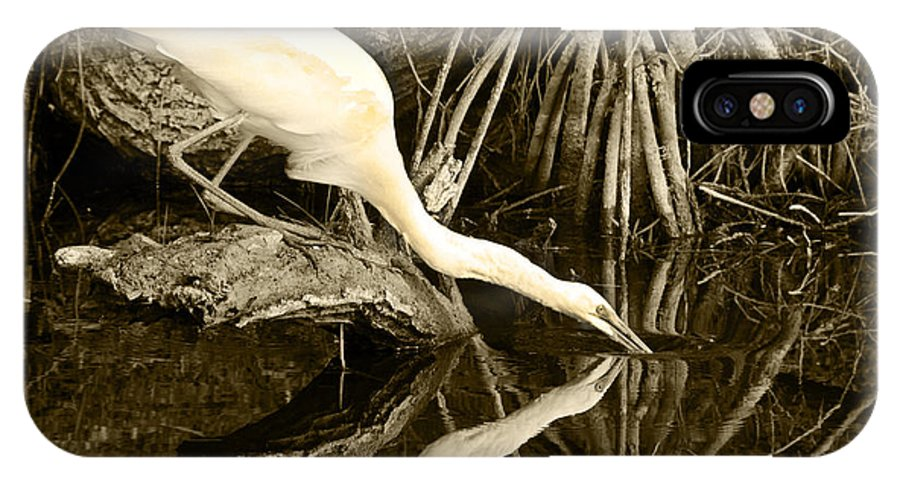 Egret IPhone X Case featuring the photograph Morning Sip II by Jody Lovejoy