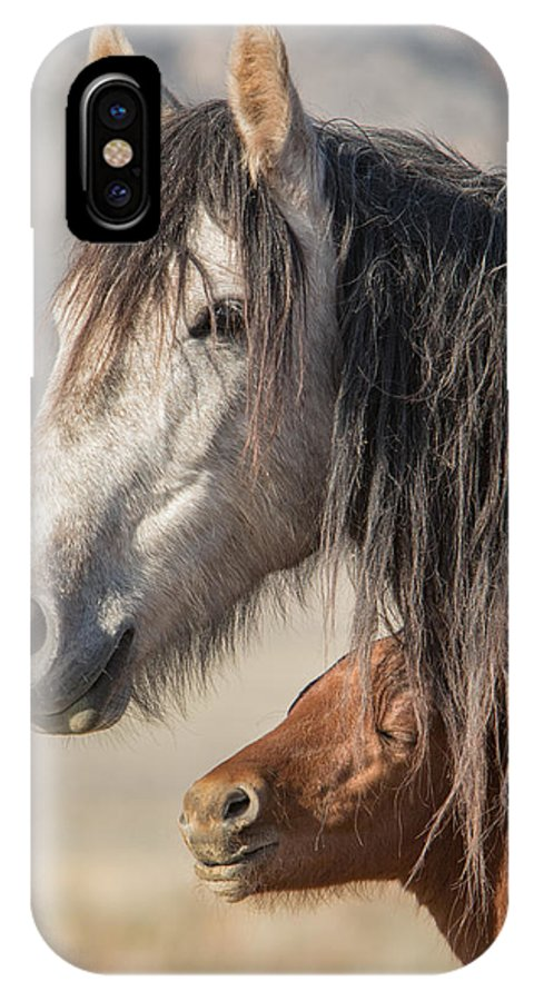Horse IPhone X Case featuring the photograph Morning Sun by Kent Keller