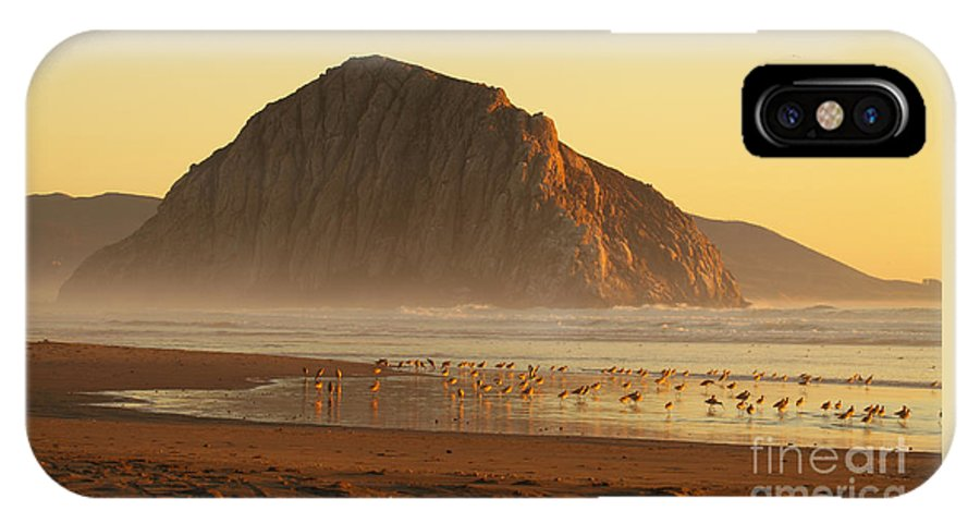 Bird IPhone X Case featuring the photograph Morro Rock At Sunset by Max Allen