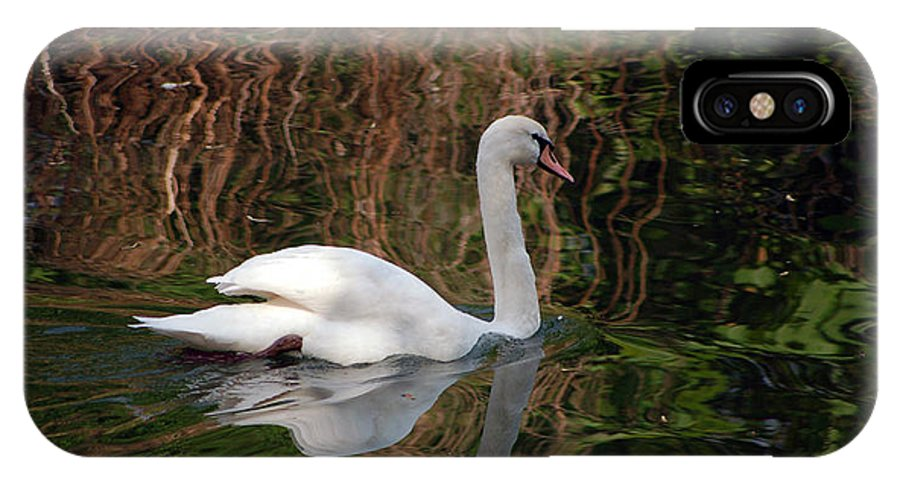 Swan Zoomlavie Angel Vallee Nature Paysage Photograp Naturel Country Sky Water Flower Mist Ligth IPhone X Case featuring the photograph Mosaic Curious Swan by Angel Vallee