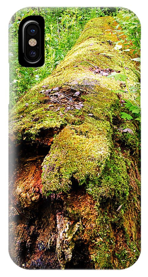 Moss Covered Log IPhone X Case featuring the photograph Moss Covered Log 3 by Larry Ricker