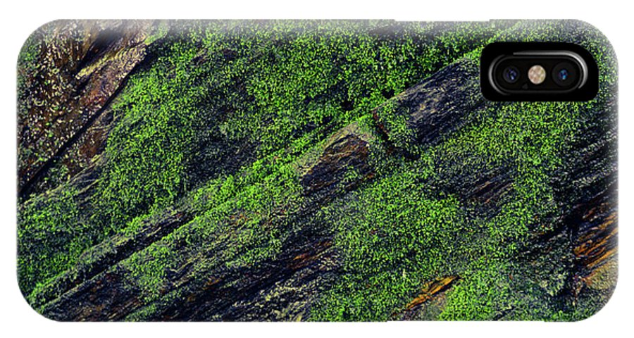 Moss IPhone X / XS Case featuring the photograph Mossy by Christina Zizzo