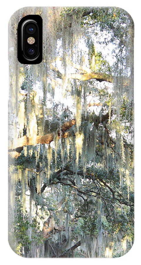 Spanish Moss IPhone X Case featuring the photograph Mossy Live Oak by Carol Groenen