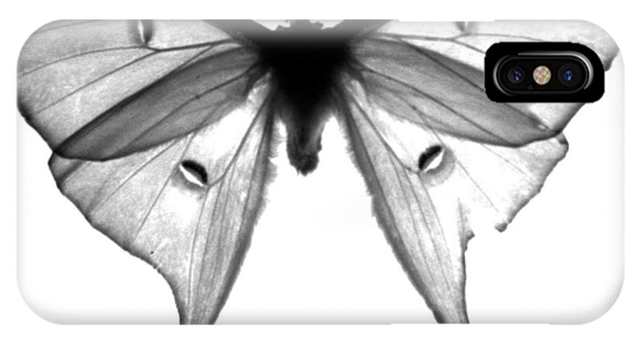 Moth IPhone X Case featuring the photograph Moth by Amanda Barcon