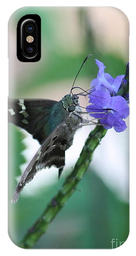 Nature IPhone X / XS Case featuring the photograph Moth On Blue Flower by Carol Groenen