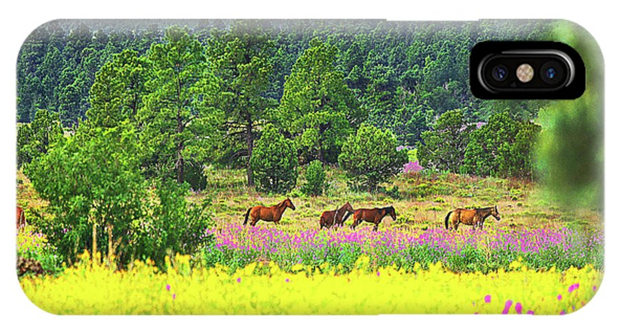 IPhone X Case featuring the photograph Mountain Horses by Don Schimmel