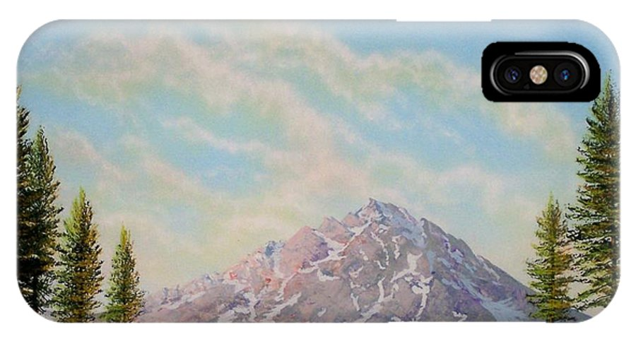 Wildflowers IPhone X Case featuring the painting Mountain Majesty by Frank Wilson