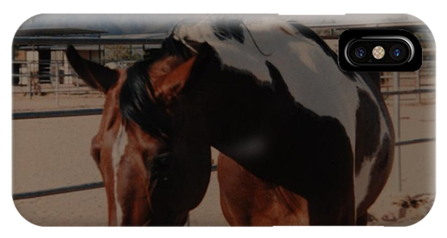 Horse IPhone X / XS Case featuring the photograph Mr Ed by Rob Hans