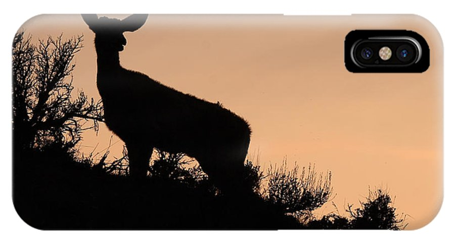 Deer IPhone X Case featuring the photograph Mule Deer Silhouetted Against Sunset Ridge by Max Allen