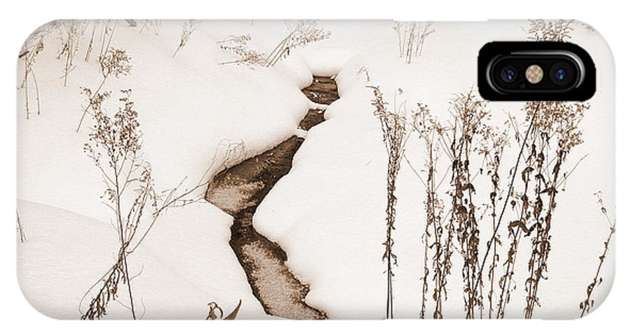 Landscape IPhone X Case featuring the photograph Muskoka Winter 1 by Kathi Shotwell