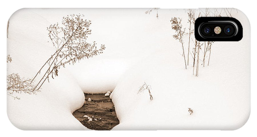 Landscape IPhone X Case featuring the photograph Muskoka Winter 2 by Kathi Shotwell