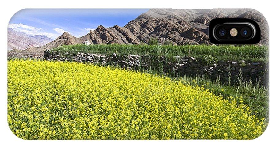 Mustard IPhone X Case featuring the photograph Mustard Field, Hemis, 2007 by Hitendra SINKAR