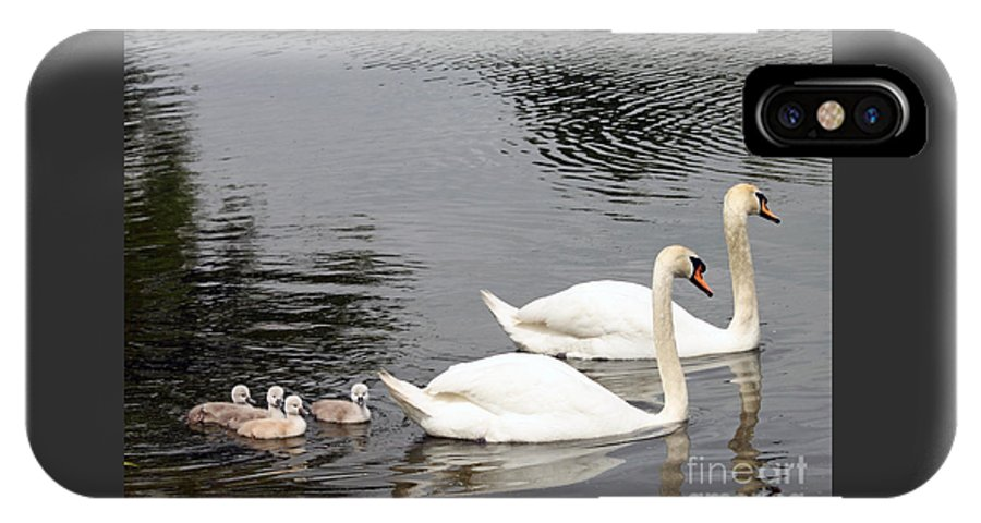 Swan IPhone X Case featuring the photograph Mute Swan Family Day Two by Steve Gass