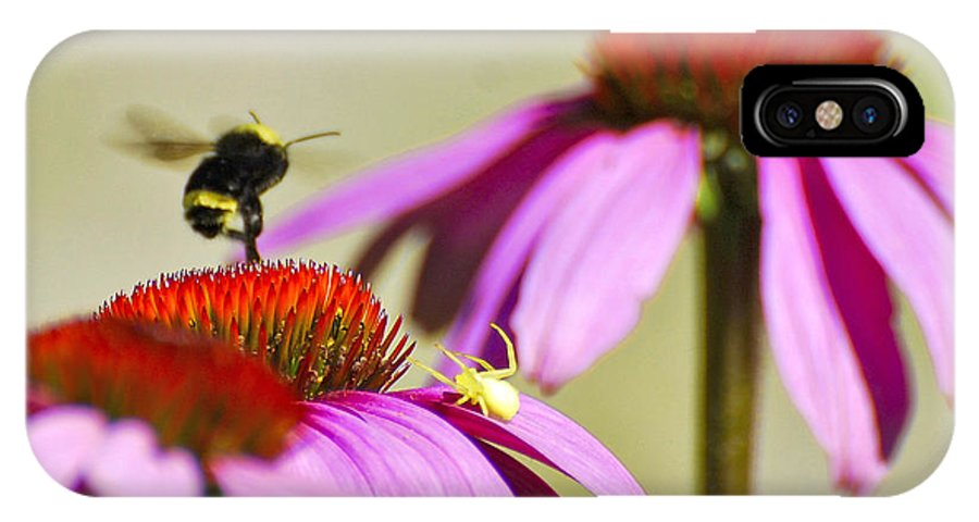 Bee IPhone X Case featuring the photograph My Flower by Larry Keahey