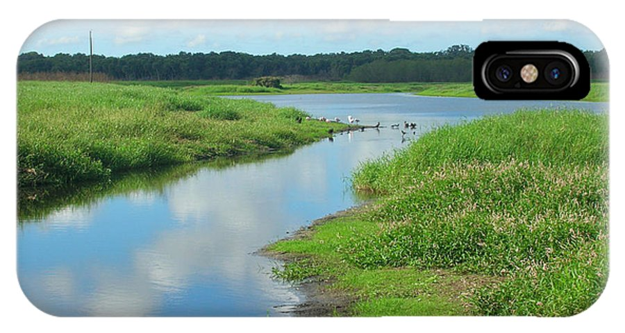 Myakka River Photographs IPhone X Case featuring the photograph Myakka River Reflections by Emmy Vickers