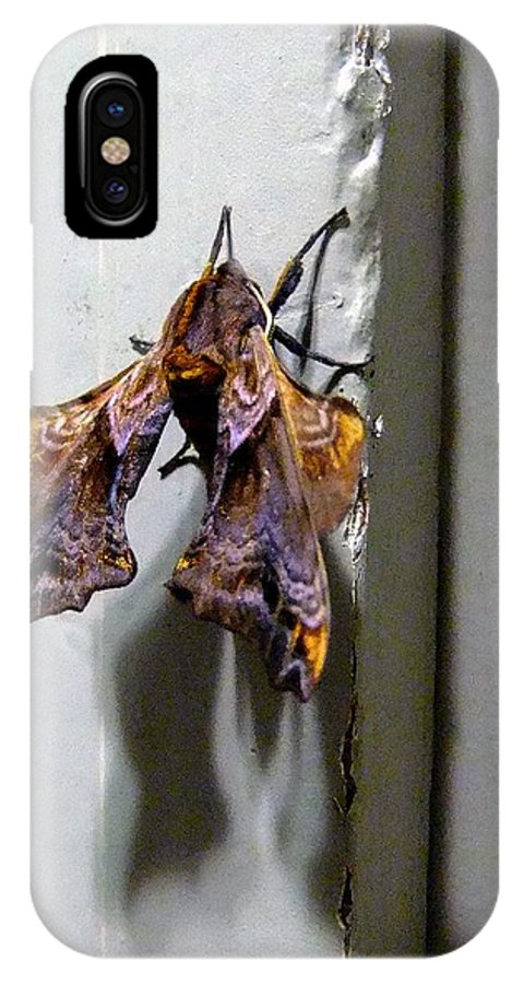 Macro IPhone X Case featuring the photograph Mysterious Visitor by RC DeWinter