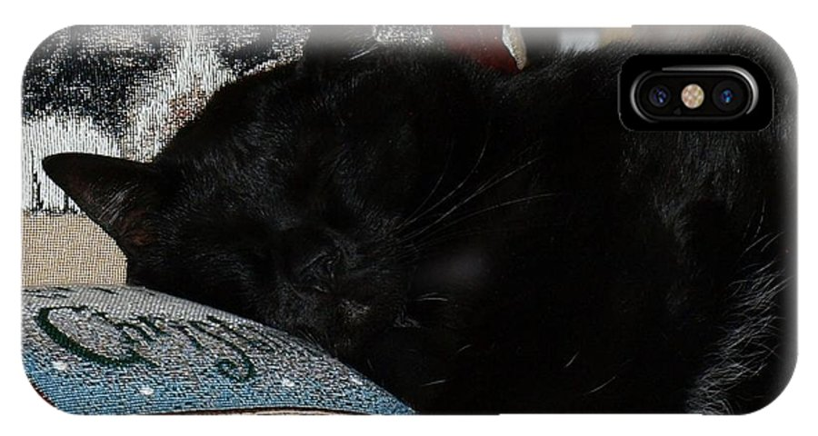 Cats IPhone X Case featuring the photograph Nap Time by Terrie Stickle