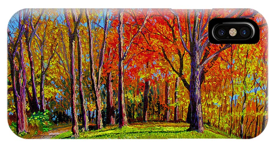 Trees Autumn Hill Grass Sunshine Shadows Sky Colors Path IPhone Case featuring the painting Nashville North by Stan Hamilton