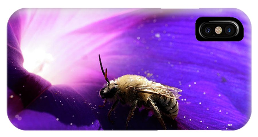 Native Bee IPhone X / XS Case featuring the photograph Native Bee On A Purple Flower by Roger Medbery