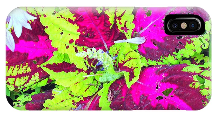 Flower IPhone X Case featuring the photograph Natural Abstraction by Ian MacDonald