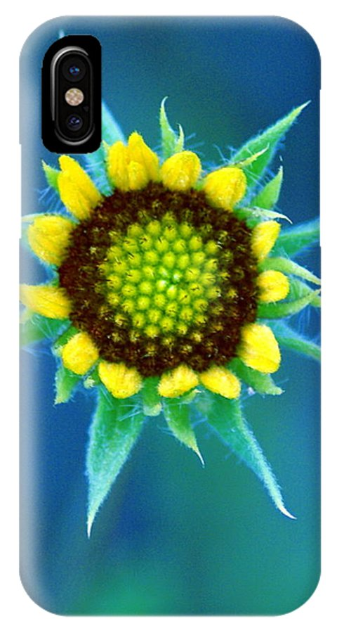 Flowers IPhone X Case featuring the photograph Natural Art by Ben Upham III