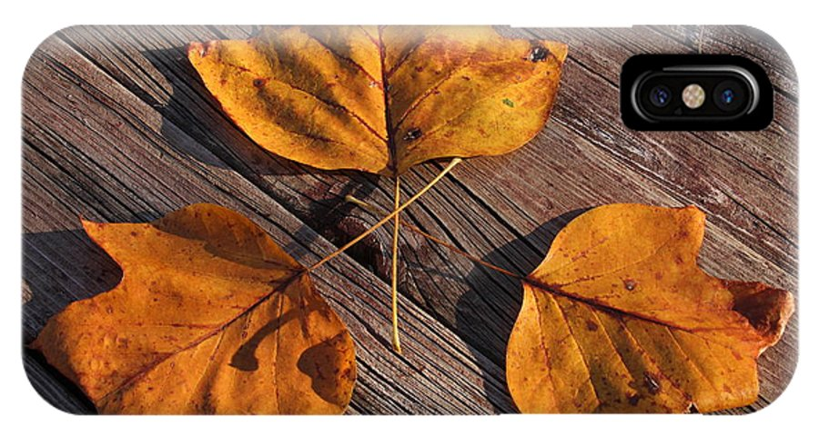 Leaves IPhone X Case featuring the photograph Nature And Me by Lyle Hatch