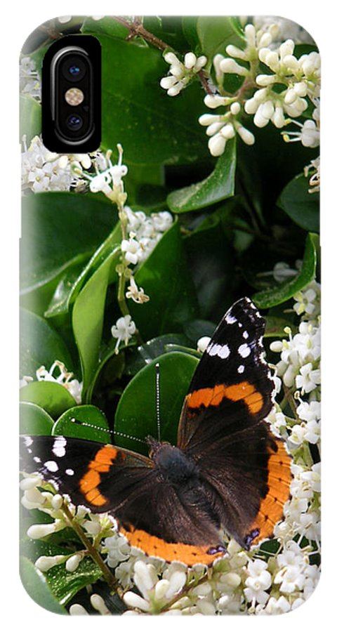 Nature IPhone X Case featuring the photograph Nature In The Wild - A Sweet Stop by Lucyna A M Green