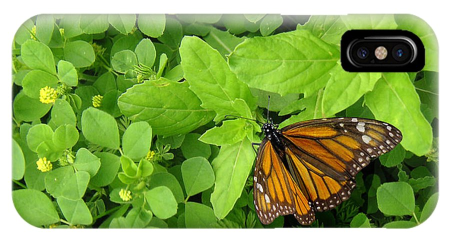Nature IPhone X Case featuring the photograph Nature In The Wild - Beautiful Solitude by Lucyna A M Green