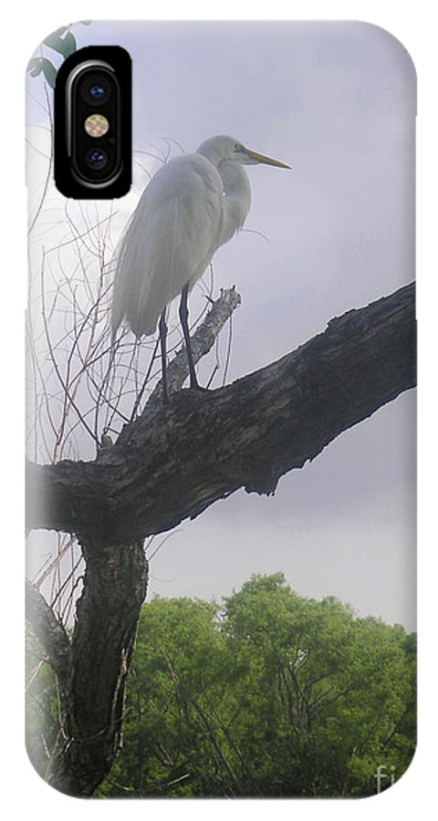 Nature IPhone X Case featuring the photograph Nature In The Wild - Scanning The Horizon by Lucyna A M Green