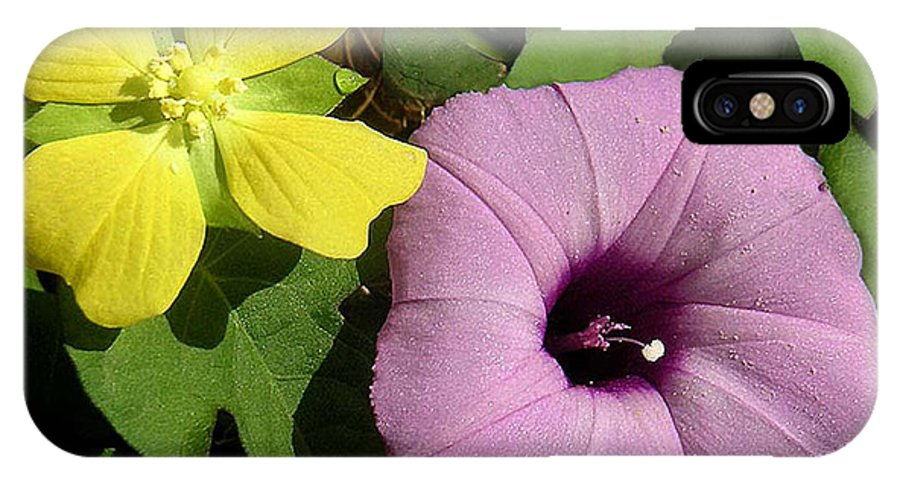 Nature IPhone X Case featuring the photograph Nature In The Wild - The Odd Couple by Lucyna A M Green