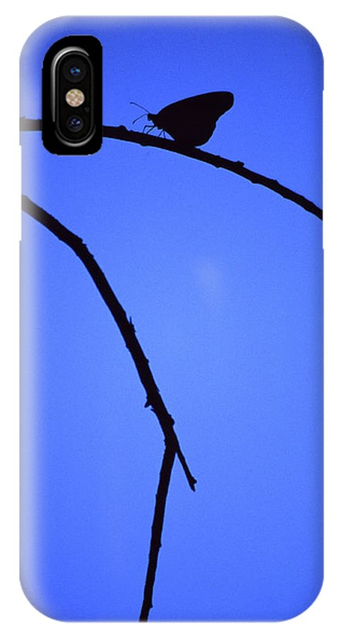 Nature IPhone X Case featuring the photograph Natures Elegance by Randy Oberg