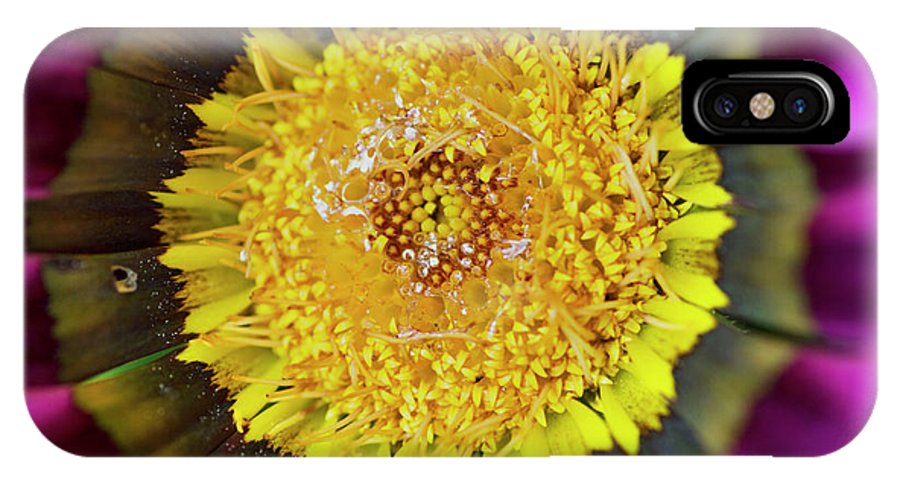 Flower IPhone X Case featuring the photograph Natures Eye by Wendy Wilton