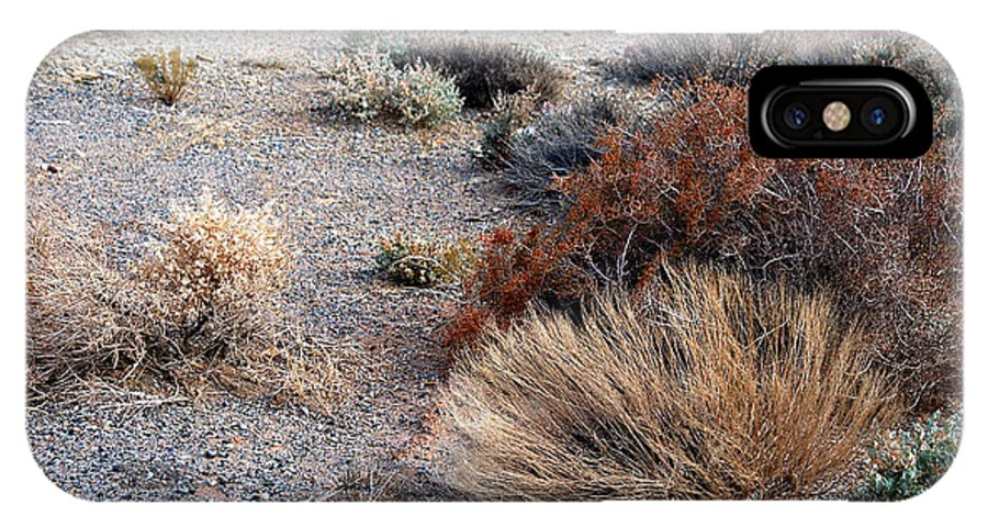 Sage Brush IPhone X / XS Case featuring the photograph Natures Garden - Utah by D'Arcy Evans
