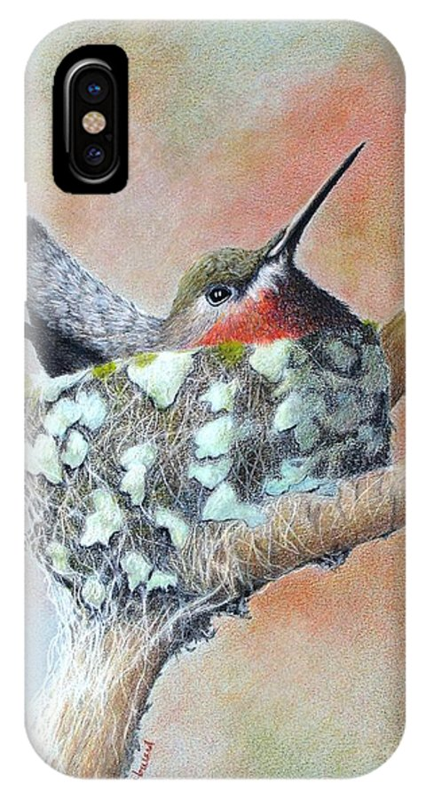 Hummingbirds IPhone X Case featuring the drawing Nesting Anna by Phyllis Howard