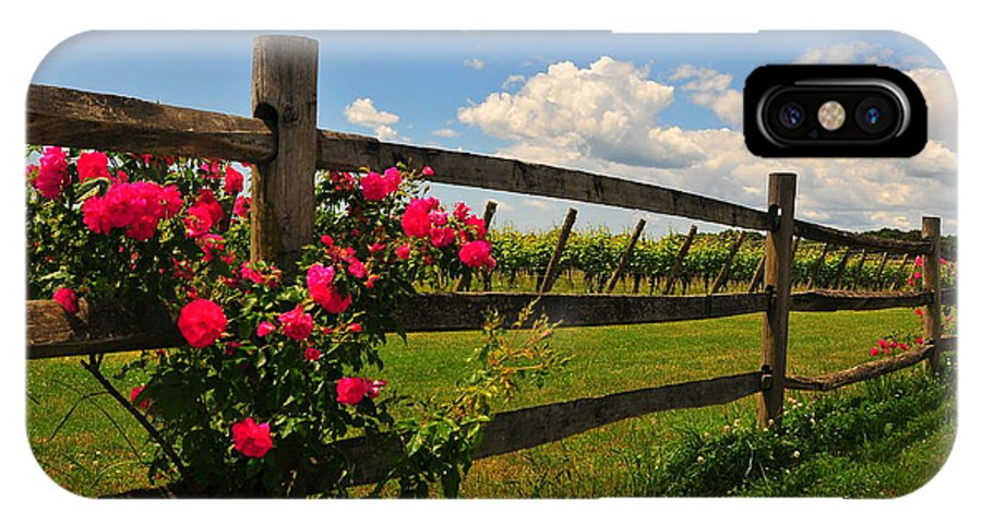 Vineyard Massachusetts New England Spring Roses Fence Wine Clouds Cloudy Cumlus Scenic Green Grass Backroads Grapes IPhone X Case featuring the photograph New England Vineyard by Catherine Reusch Daley