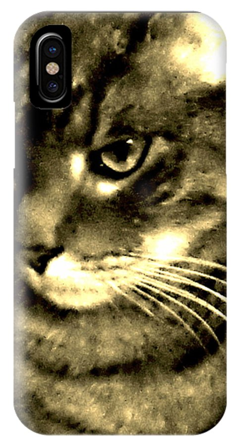Cat IPhone X Case featuring the photograph Newsprint Angel by Percival Vince