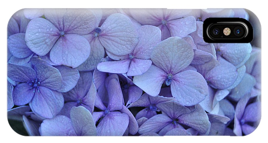 Cape Cod IPhone X Case featuring the photograph Nikko Blue Petals by JAMART Photography