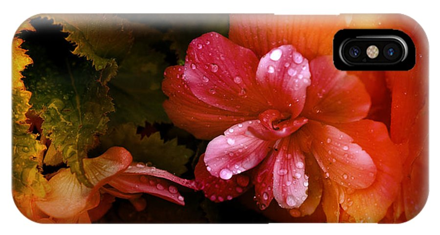 Flowers IPhone X Case featuring the photograph No Title002 by Paul Gavin