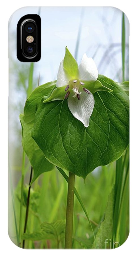 Wild Flowers IPhone X Case featuring the photograph Nodding Trillium by Sandra Updyke