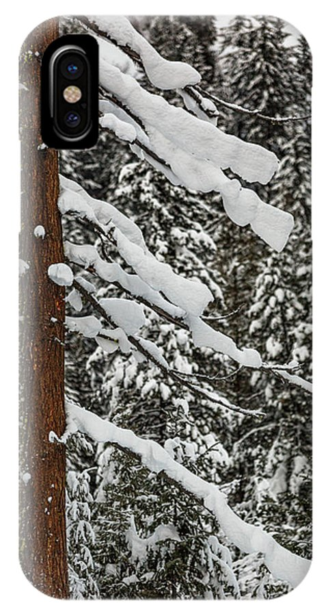 North Cascades IPhone X Case featuring the photograph North Cascades Forest by Mike Penney