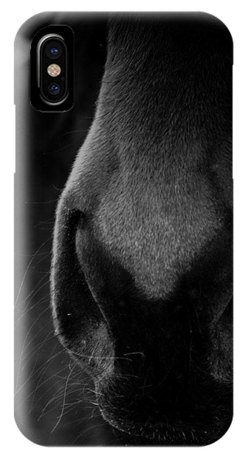Horse IPhone X Case featuring the photograph Nose Best by Hannah Breidenbach