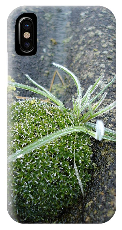 Green IPhone X Case featuring the photograph Not Quite A Roof Garden by Susan Baker