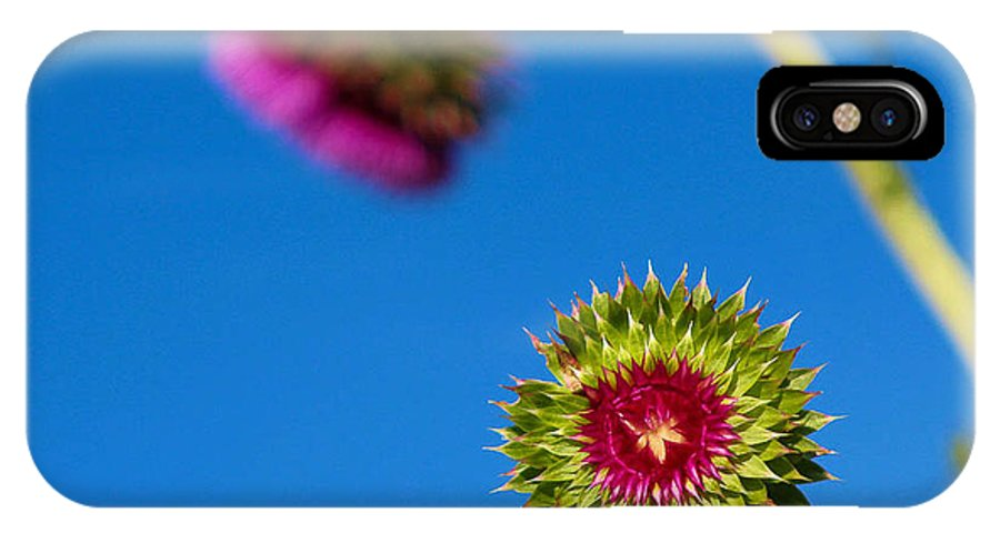 Thistle IPhone X Case featuring the photograph Not Quite Ready by Jessica Fronabarger